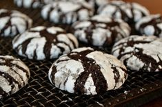 Lida Ward& Chocolate Krinkle Cookies are delicately crisp on the outside with a soft interior, and they hold their texture for days! Chocolate Krinkle Cookies, Chocolate Crinkles, Chocolate Cake Mixes, Holiday Baking, Christmas Baking, Christmas Treats, Christmas Recipes, Holiday Recipes, Cookie Recipes