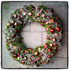 great DIY ideas for beautiful wreaths in the . - 14 great DIY ideas for beautiful wreaths in the … the wreaths great DIY ideas for beautiful wreaths in the . - 14 great DIY ideas for beautiful wreaths in the … the wreaths - Handmade Christmas Decorations, Thanksgiving Decorations, Seasonal Decor, Holiday Decor, Autumn Wreaths, Holiday Wreaths, Autumn Crafts, Summer Diy, Diy Wreath