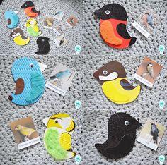 Sensory birds/ ptaki sensoryczne