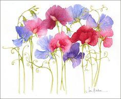 jan harbon | フラワー 花の素材-花の絵画
