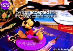 dream come true, colleg program, disney college program
