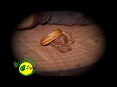 Anelli in Legno - Wood Rings 4
