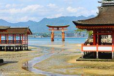 Floating torii gate in Itsukushima Shrine, Miyajima Island