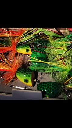 Bass fly fishing with poppers.