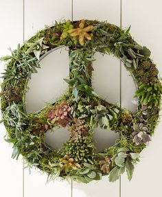 Hanging Peace Sign for succulents and air plants