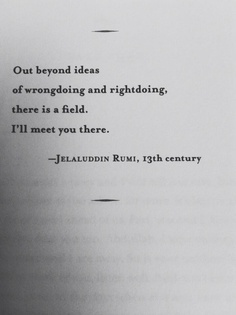 Out beyond ideas of wrongdoing and rightdoing, there is a field. I'll meet you there.   - Jelaluddin Rumi, 13th century