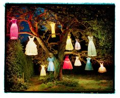 Tree with glowing dresses in in, pretty!