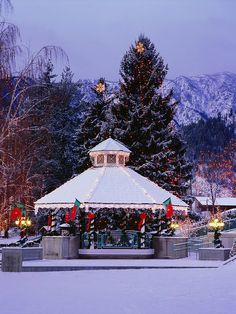 Discover the best towns to visit for Christmas in the United States for tree lightings, ice skating, Main Street celebrations, and picturesque snow. Christmas Town, Christmas Travel, Christmas Vacation, Winter Christmas, Xmas, Christmas Markets, Magical Christmas, Christmas Villages, Christmas Desserts