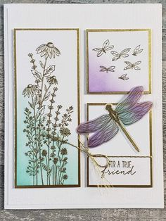 Homemade Birthday Cards, Homemade Cards, Beautiful Handmade Cards, Christmas Cards To Make, Shaker Cards, Butterfly Cards, Stamping Up, Cool Cards, Creative Cards