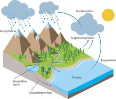 A lot of diagrams explaining the water cycle make it look so water cycle diagram ccuart Image collections