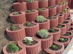 jetzt zeigen wir ihnen eine tolle idee zum thema gartengestaltung - hier sind einige pflanzsteine mit blumen Retaining Wall Blocks, Pet Water Fountain, Home Landscaping, Diy Patio, Planter Boxes, Garden Projects, Potted Plants, Exterior, Garden Design