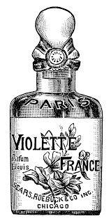 Violette Purfum