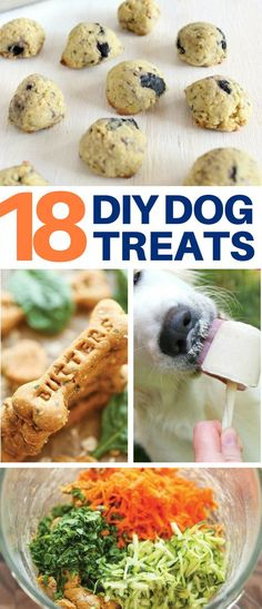 These 18 DIY Dog Treat Recipe Ideas Will Have Your Pooch Goin' Nuts! They're healthy too! #dogtreats #recipes