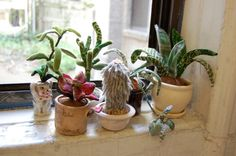 I want one of these fabric plants. SO cute. By Sian Keegan