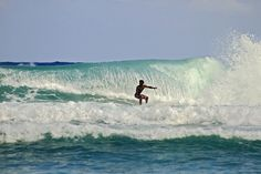 Local surfer Boston Bay (Jamaica)