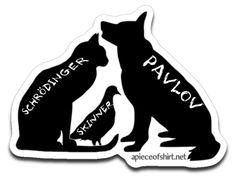 Schrodinger ~ Skinner ~ Pavlov (Decal)