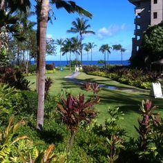Westin Ocean Resort Villas Ka'anapali Beach Maui HI. A great walk everyday along the beach! I have some for rent.