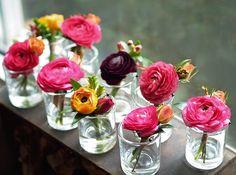 alluring blooms Ranunculus