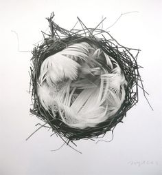 Charcoal Drawings by Jonathan Delafield Cook