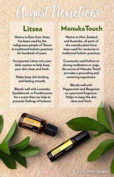 Manuka Touch and Litsea Manuka Essential Oil, Essential Oil Diffuser Blends, Best Essential Oils, Diy Beauty Essentials, Best Oils, Doterra Essential Oils, Doterra Recipes, Free Message, Essential Oils