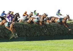 Getting Familiar With Latest Exotic Bets Horse Racing Trends For Big Events Fox Hunting, Grand National, Crazy Horse, Horse Care, Horse Racing, Equestrian, Things To Do, Exotic, Horses