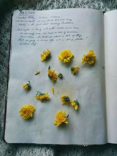 """improving-slowly: """"Some of my favourite pages from the summer :) """""""