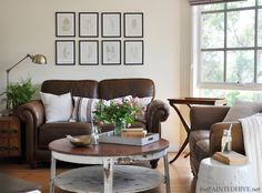 Decorating, living with, and loving, a brown sofa - love the light in this room = you can have light and airy with a brown heavy piece
