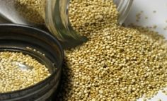 7 Whole Grains to Add to Your Diet