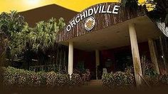 Cool Orchidville | Singapore places for kids and events for children - KidslanderSingapore places for kids and events for children  Kidslander pic #Orchidville