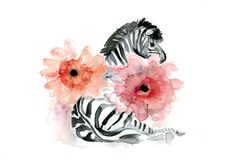 1000 images about lovin my zebra 39 s on pinterest zebra for Dujardin zebre