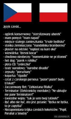 Czeskie zwroty Polish Memes, Polish Language, Weekend Humor, Funny Mems, Science For Kids, Read News, Wtf Funny, Creepypasta, Man Humor