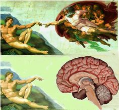 Did Michelangelo have a Hidden Message in The Creation of Adam? | Shane Cloud