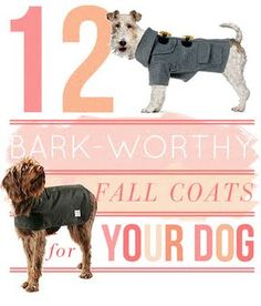 12 Dog Coat Tutorials. Eeeek!! I've been NEEDING this for my boxers since we moved to Colorado!! Now I just gotta get a sewing machine ;)