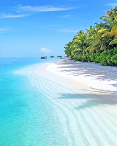 The Maldives Photography Romantic Travel Vacation Places, Dream Vacations, Vacation Spots, Places To Travel, Places To See, Travel Destinations, Travel Things, Vacation Ideas, Exotic Beaches