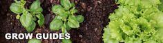 Organic garden grow guides
