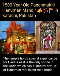 True Interesting Facts, Interesting Facts About World, Intresting Facts, Amazing Facts, Weird History Facts, Wierd Facts, Fun Facts, Hanuman Pics, General Knowledge Book