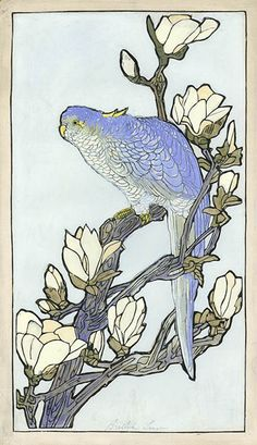 Parrot (raised line)  by Bertha Lum, 1922