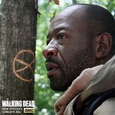 the walking dead season 5 episode 1 images   The Walking Dead Spoilers Season 5 Episode 2 Video Preview Synopsis ...