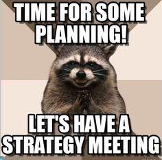 Time For Some Planning! - Evil Plotting Raccoon meme on Memegen