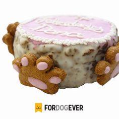 Pasteles para perros de ForDOGever, artesanales, con ingredientes naturales y con propiedades para perros, con frutas y verduras.  Especialistas en repostería canina.  #pastel #perro