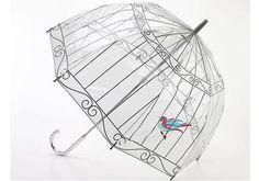 guarda-chuva lulu