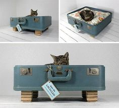 upcycle ~ old suite case to cat bed, Figment would love this! - upcycle ~ old suite case to cat bed, Figment would love this! upcycle ~ old suite case to cat bed, - Stuffed Animals, Diy Cat Bed, Diy Dog, Cat Beds, Best Suitcases, Recycling, Dog Clothes Patterns, Pet News, Pet Clothes