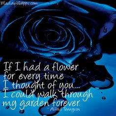 rose flowers forever garden quote quotes rose roses sayings Blue Rose Picture, Rose Poems, Sweet Love Words, Blue Quotes, Pomes, Beautiful Love Quotes, Garden Quotes, Thoughts Of You, I Think Of You