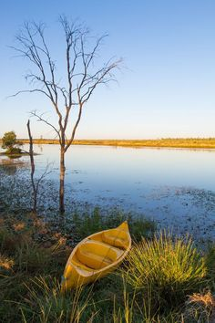 Outback Queensland Road Trip Itinerary.  Start planning your road trip itinerary for this epic Australia vacation.  See all the best sites, check out the best things to do, routes and more. #Queensland #Outback #Australia