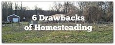 Mixed Bag Mama: 6 Drawbacks of Homesteading  It's not all fun and games growing your own food, raising animals, etc. Take the points in today's post into consideration if you're thinking of homesteading yourself!