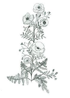 Poppy tattoo design by Katt Frank