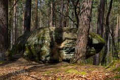 Druidenstein im Mäbenberger Wald  Der Sandsteinfelsen im Mäbenberger Wald wurde 1465 erstmals als markantes Flurzeichen Hohlstein erwähnt. Sagen um den Felsen als Opferplatz keltischer Priester gaben dem Stein im 19.Jd. seinen Namen Druidenstein.