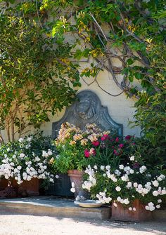 love the details in this garden...Landscaping Design Tips from Margie Grace - Traditional Home