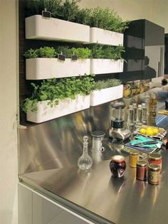 Stunning Indoor Wall Herb Garden Ideas Again, you are in need of a good-dr. Stunning Indoor Wall Herb Garden Ideas Again, you are in need of a good-draining compost. Kitchen Cabinets Models, Herb Garden Design, Garden Ideas, Herbs Garden, Indoor Vegetable Gardening, Organic Gardening, Wall Herb Garden Indoor, Indoor Herbs, Herb Wall