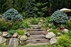 Vibrant Garden Backyard - traditional - landscape - other metro - Scenic Landscaping Landscaping Tips, Garden Landscaping, Lawn And Garden, Garden Paths, Urban Landscape, Landscape Design, Rectangle Garden Design, Steps Design, Design Ideas